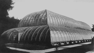 Great Stove - Chatsworth - 1844