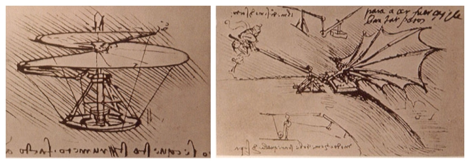 Leonardo flying machines