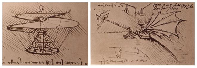 Leonardo flying machines